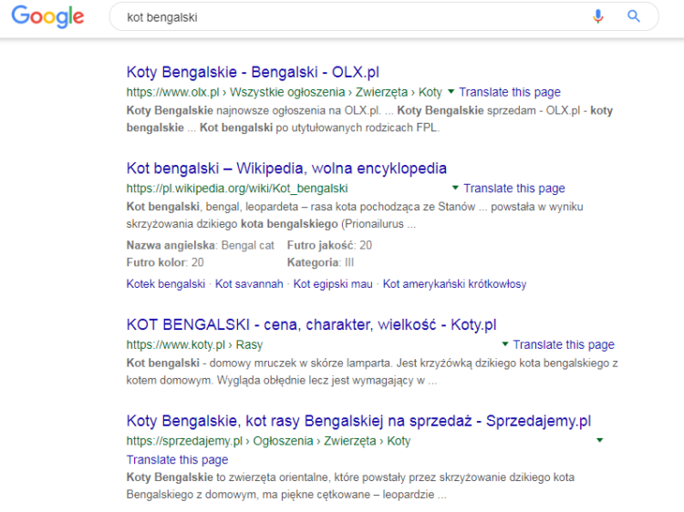 SERP: Search Engine Result Page - definicja