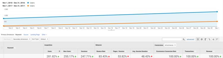 SEO results Netcube
