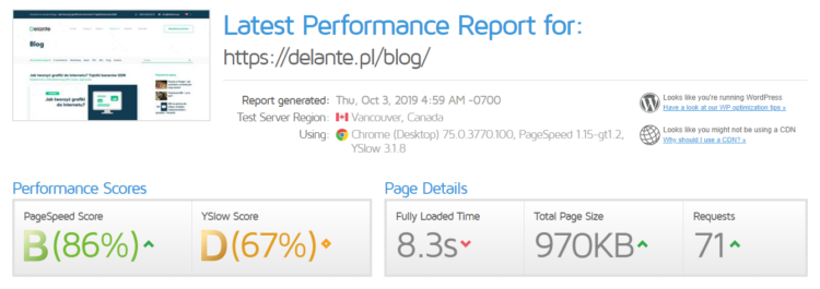 GTmetrix raport
