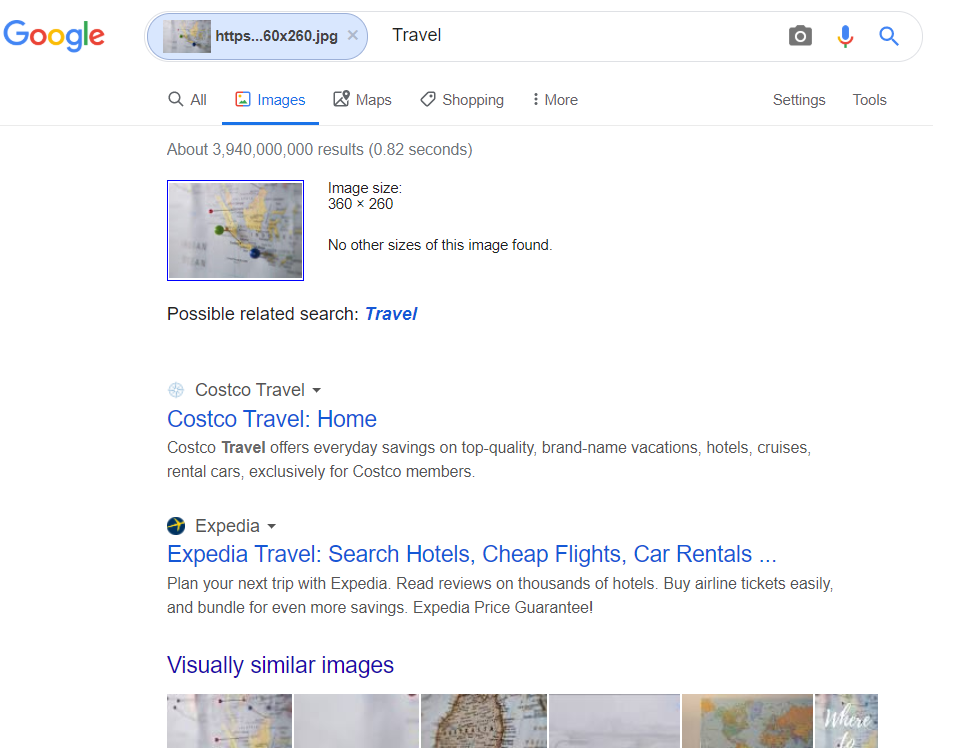 Searching Google Images