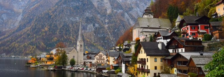 E-Commerce And SEO Strategy In Austria