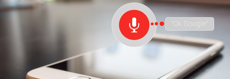 Voice Search Optimization: Do You Need It?