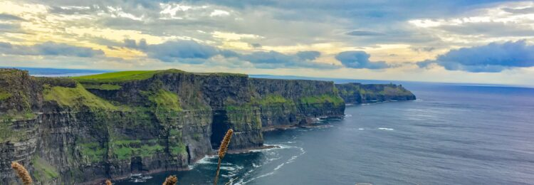 SEO in Ireland. What Do You Need to Know?