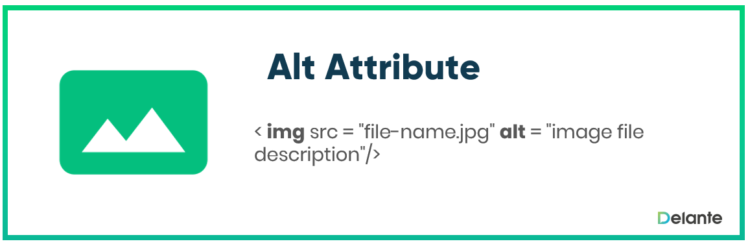 What is alt attribute